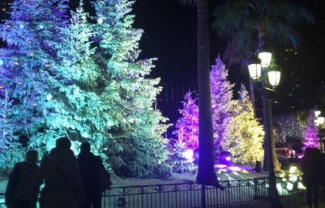 Kerstbomen kerstverlichting